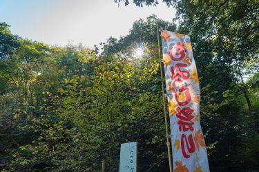 紅葉狩り−ひろしま遊学の森−