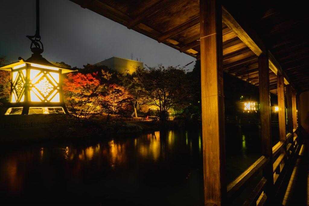 三景園ー夜撮影3