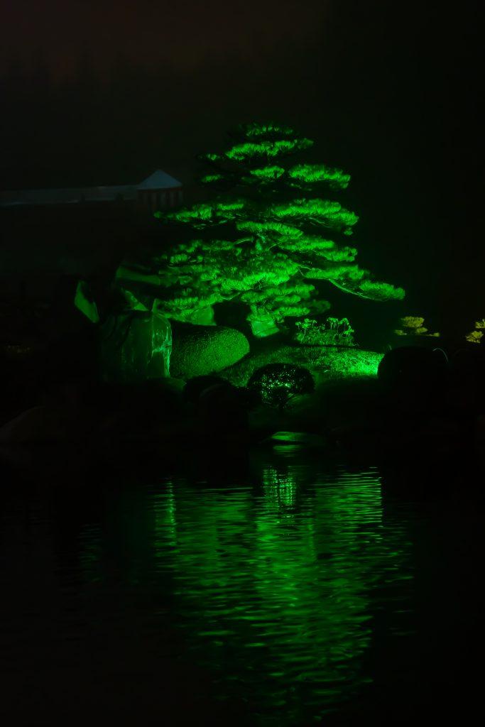 三景園ー夜撮影4