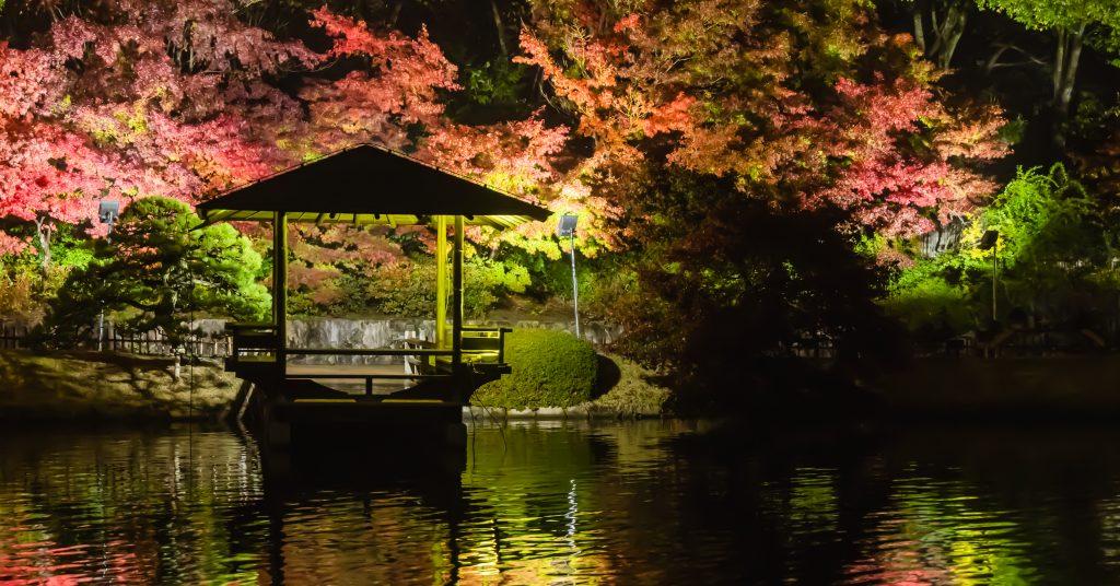 三景園ー夜撮影6