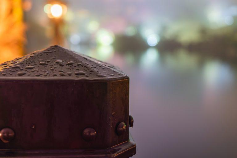 三景園ー夜撮影8