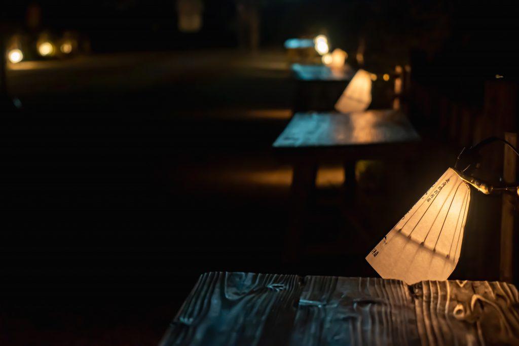 縮景園-夜撮影1