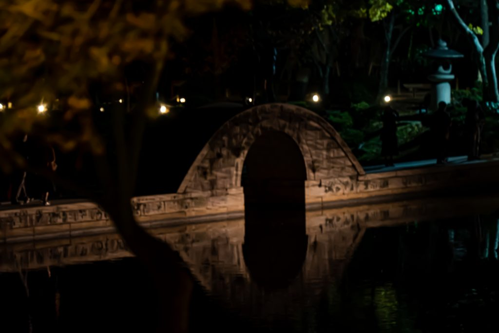 縮景園-夜撮影6