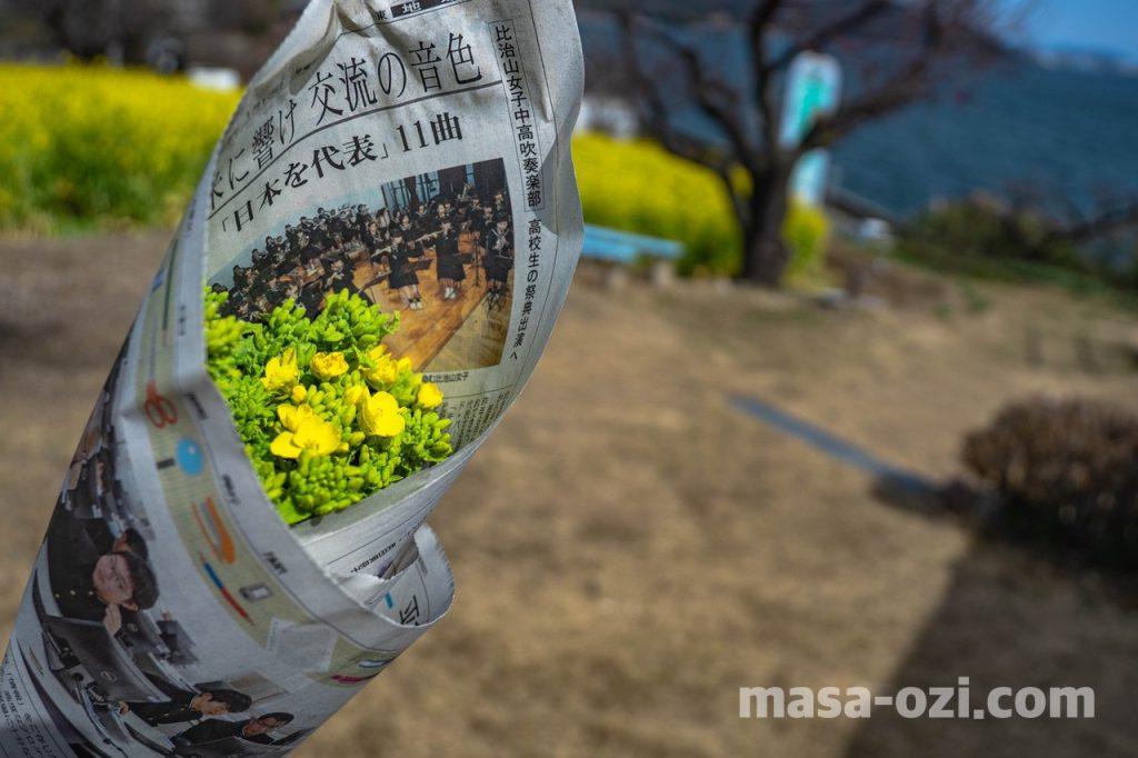 田尻町菜の花畑-昼撮影その10