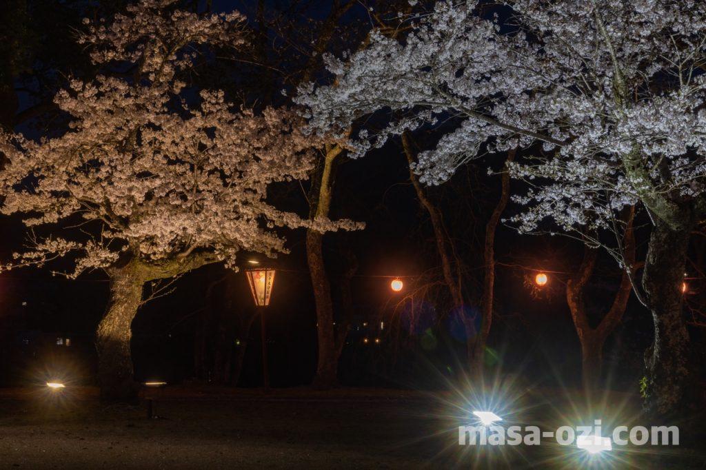 三次市-尾関山公園-夜撮影その1