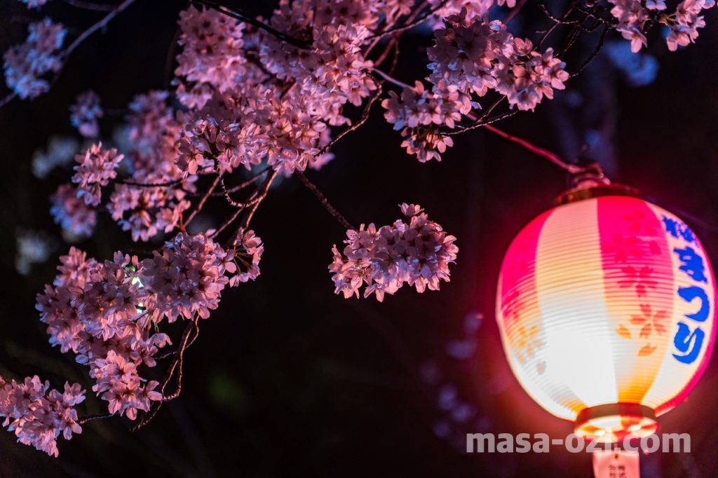 三次市-尾関山公園-夜撮影その3