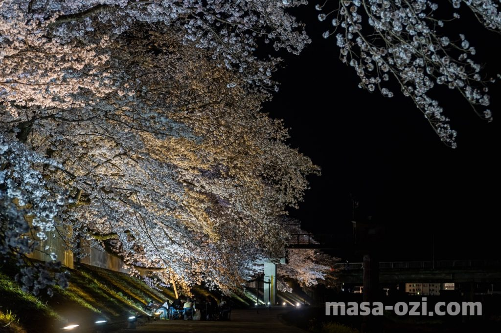 三次市-尾関山公園-夜撮影その7