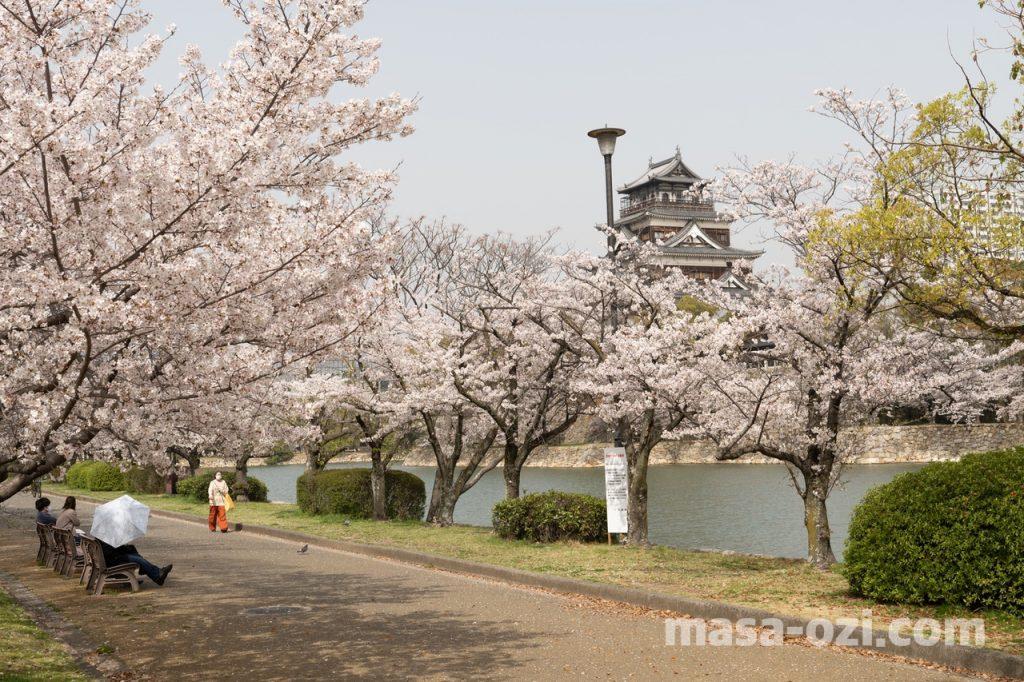 中区-広島城付近-昼撮影その5