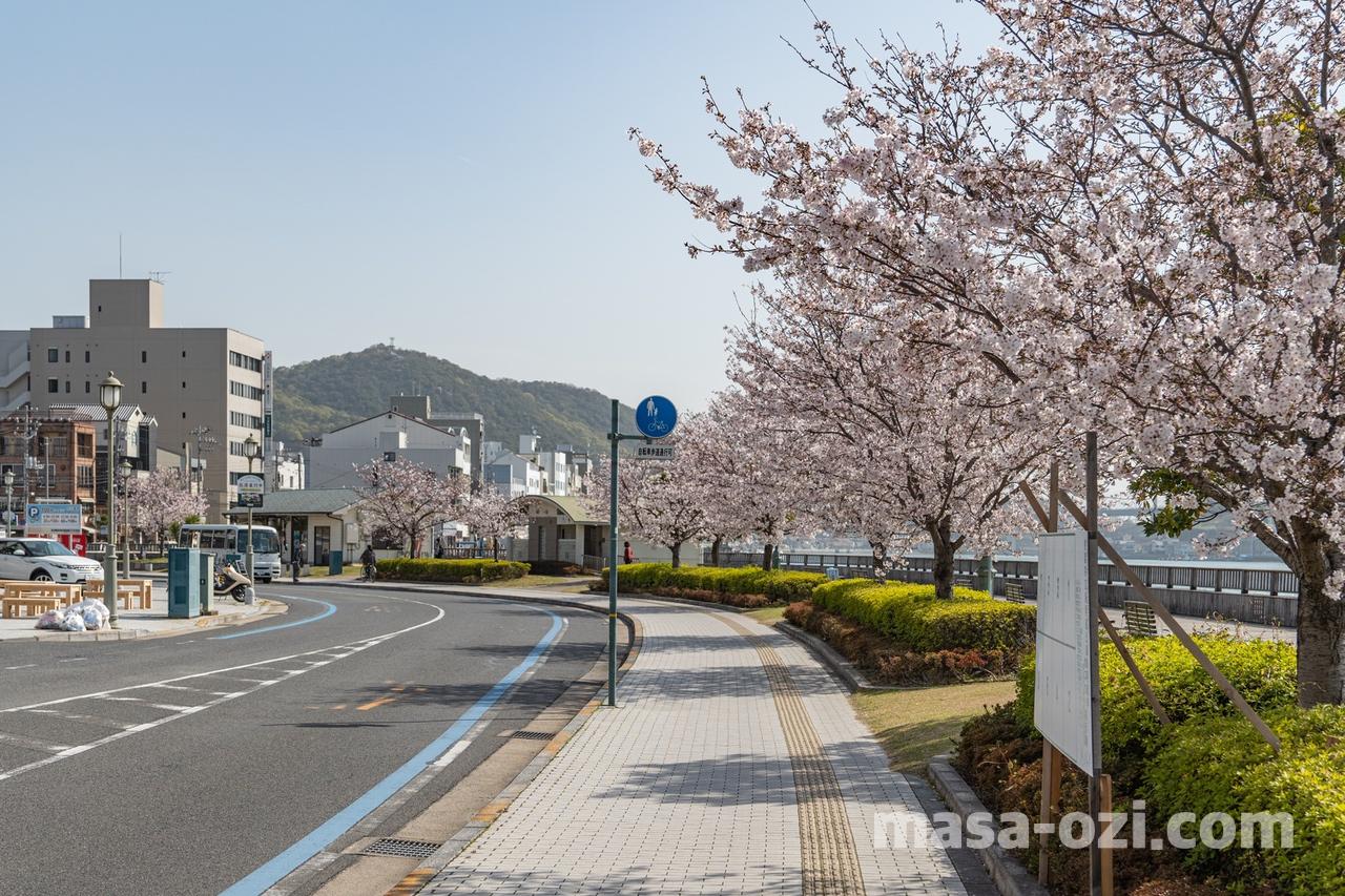 尾道市-春風景-昼撮影その2
