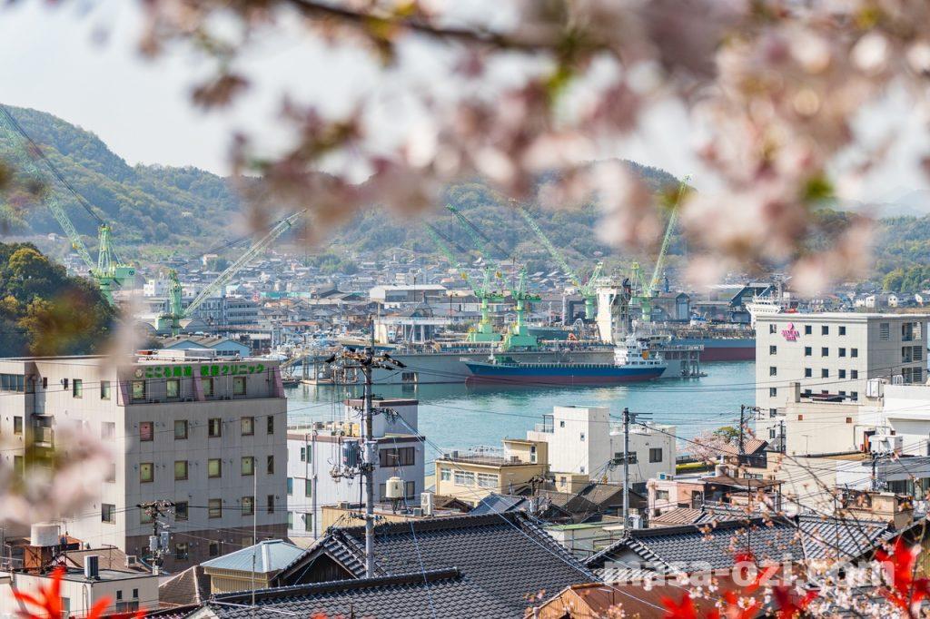 尾道市-春風景-昼撮影その8