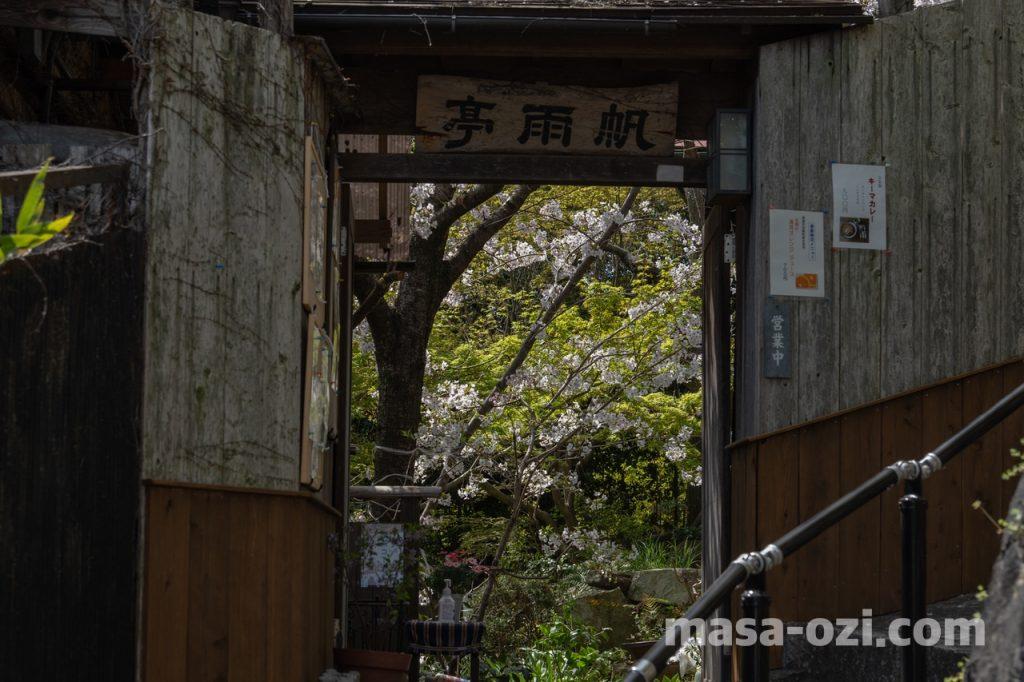 尾道市-春風景-昼撮影その13
