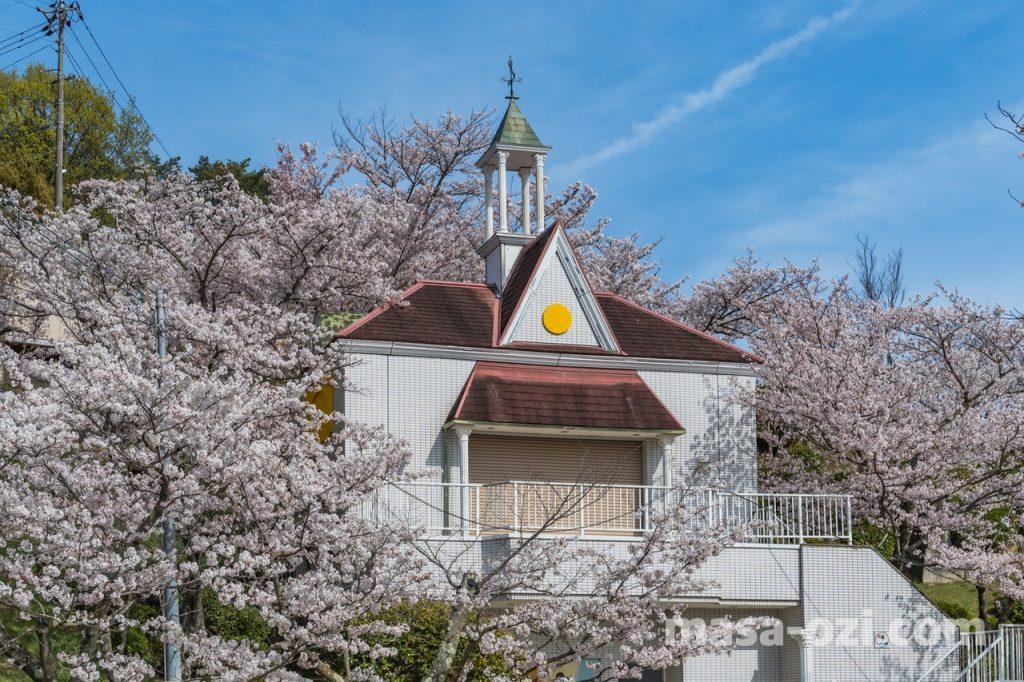 尾道市-春風景-昼撮影その21