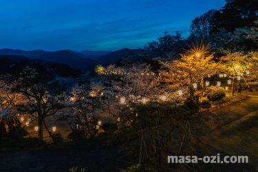 尾道市-桜のライトアップと夜景-