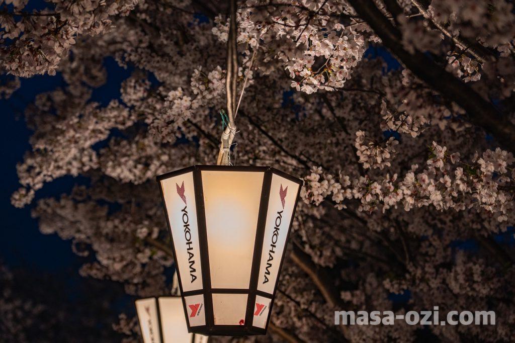 尾道市-夜景-夜撮影その4