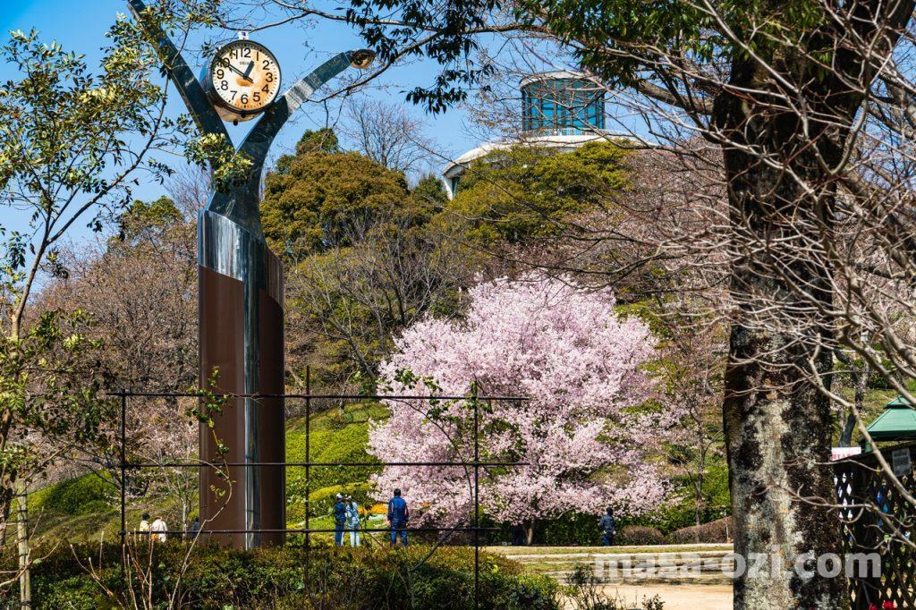 佐伯区-広島市植物公園-昼撮影その2