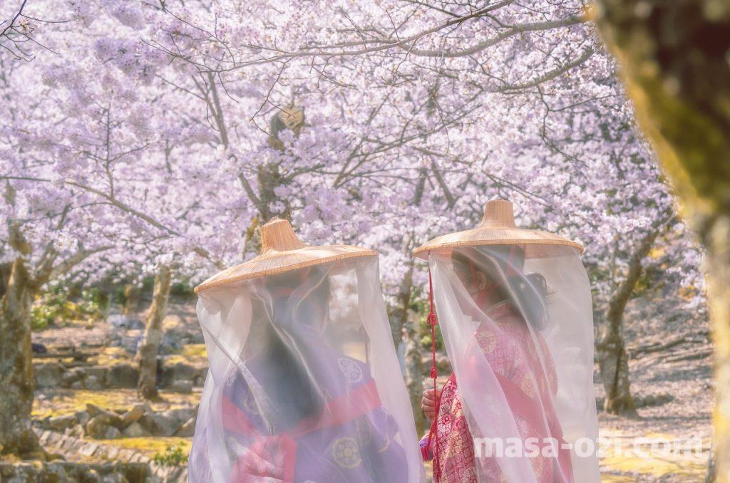 宮島-2021春-昼撮影その23