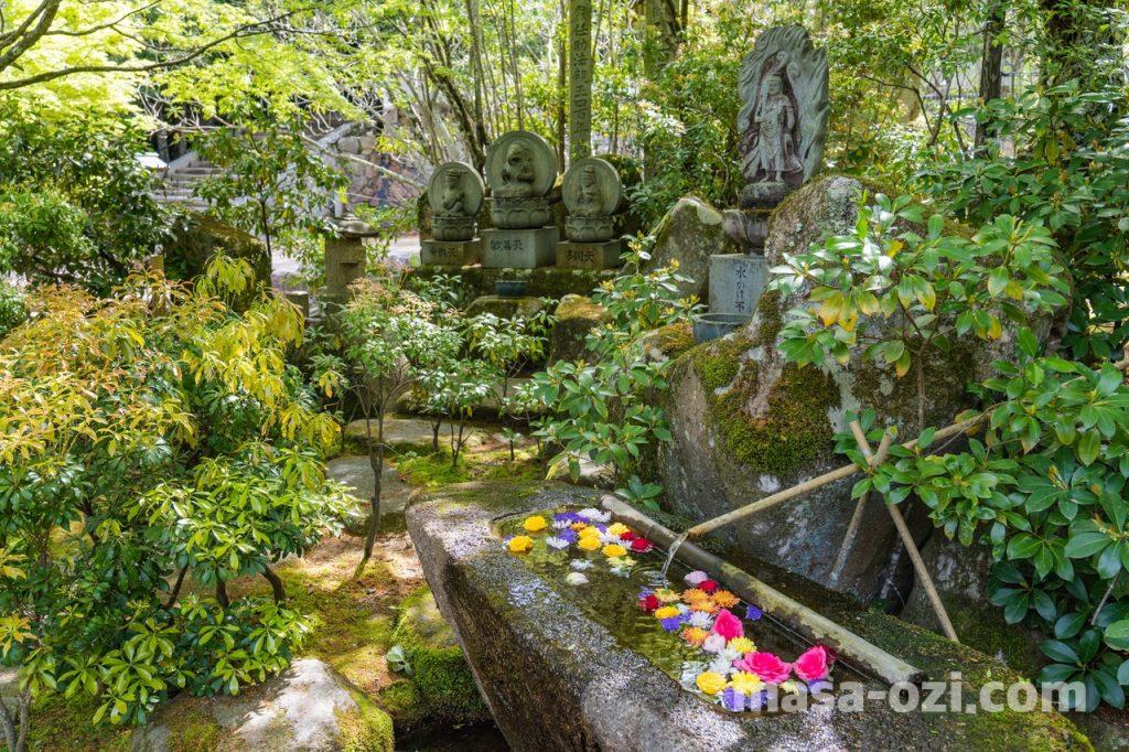 宮島-大聖院-火渡り神事-昼撮影その10
