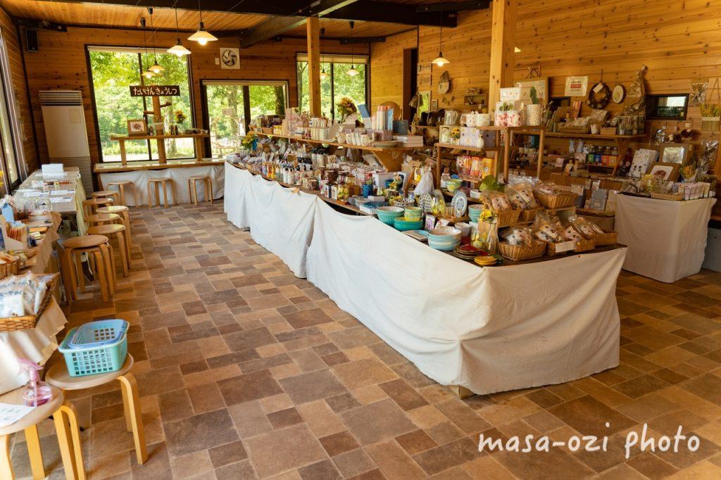 世羅高原農場2021-ひまわり-昼撮影その12